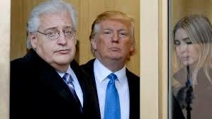 David Friedman Trump